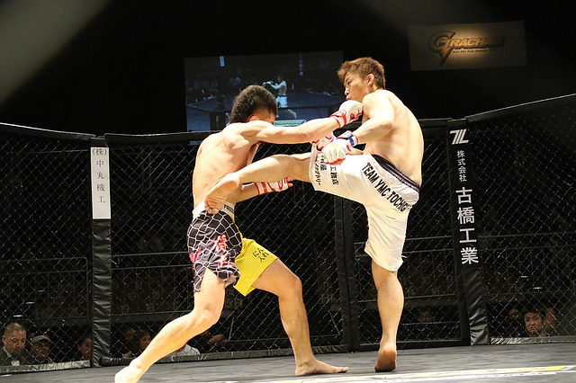 photo de 2 combattants de mma